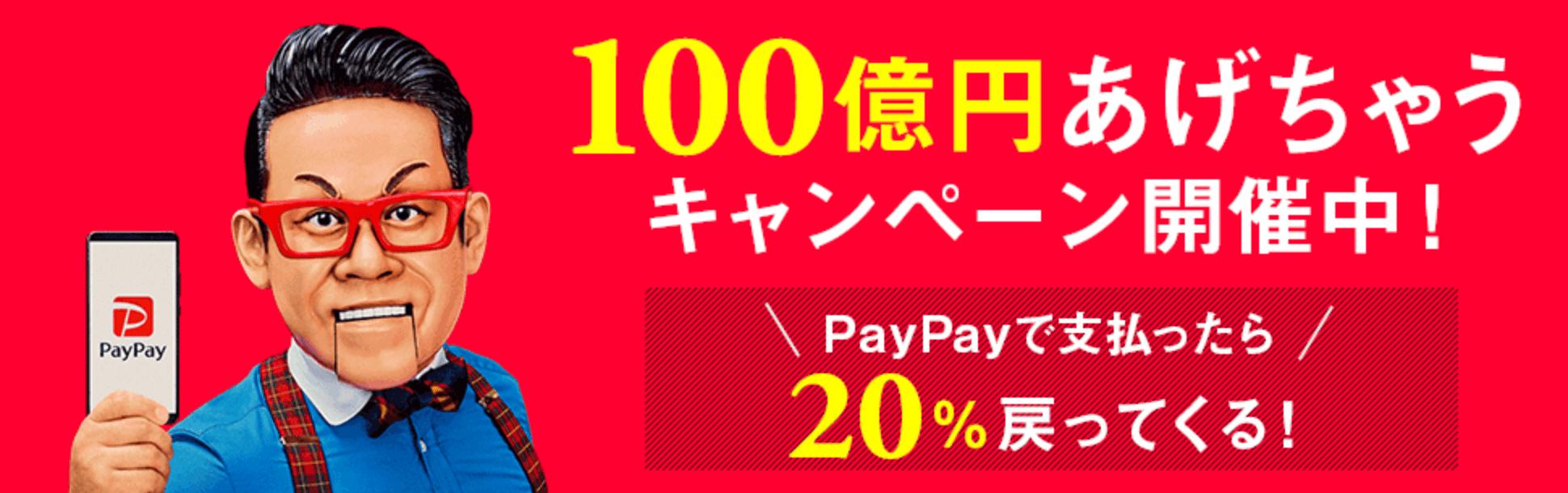 paypay 20%還元 ビックカメラ